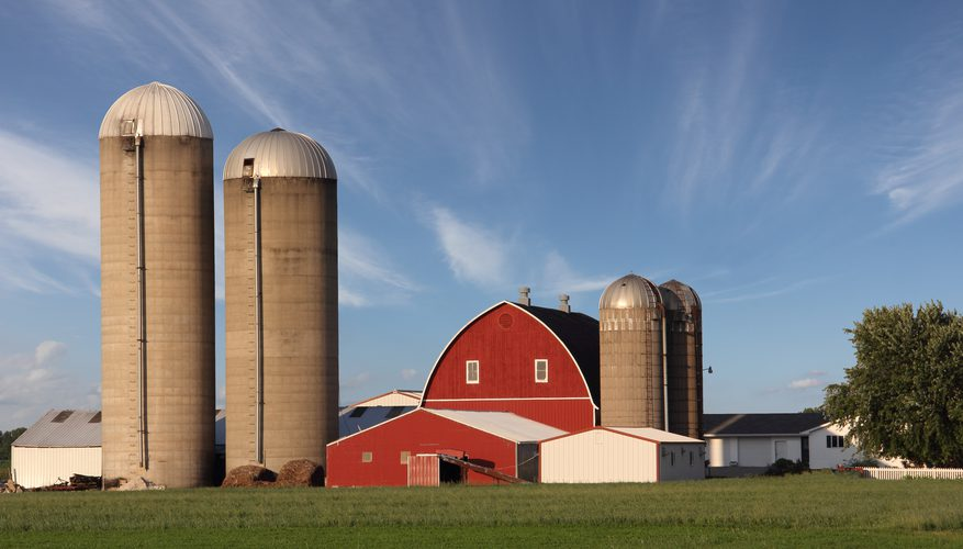 Grain Storage Silos For Sale